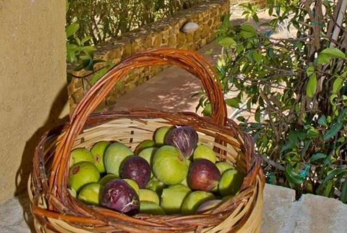 Cilento Scents&Flavours-Borgo Riccio Residenza d'Epoca