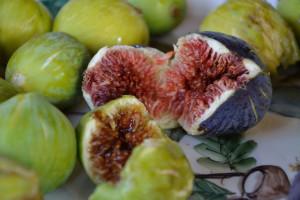 Profumi e Sapori dell' autunno in Cilento